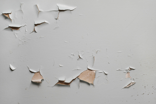 How To Solve Flaking And Peeling Paint In Your Home
